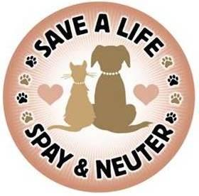Cost Of Neutering A Dog At Pets At Home